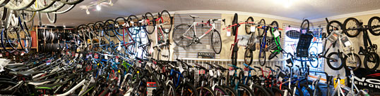 Bicycles on the Showroom Floor